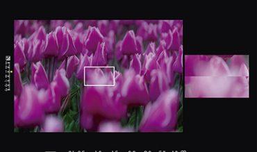 khả năng lấy nét bằng tay của máy ảnh Fujifilm X-T2